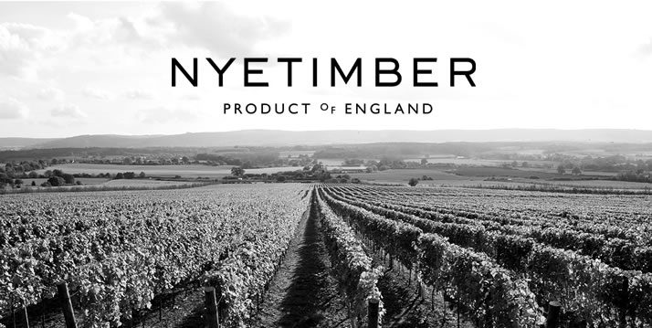 NYETIMBER sparkling wine fields